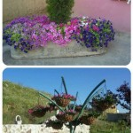collage jardineras