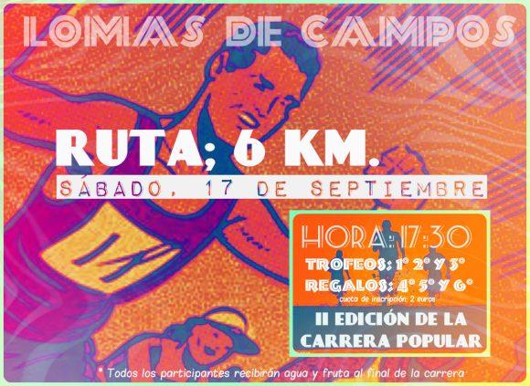 Cartel Carrera Popular 2016