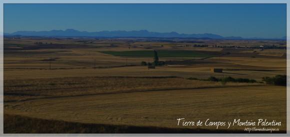 IMGP4017 Tierra de Campos y Montaña Palentina