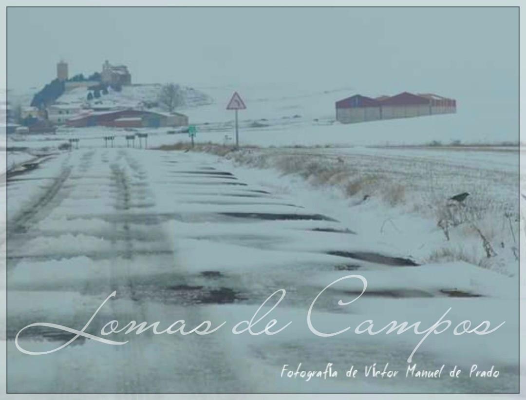 Fotografías de Lomas nevado